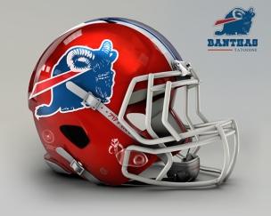 John Raya - Buffalo Bills