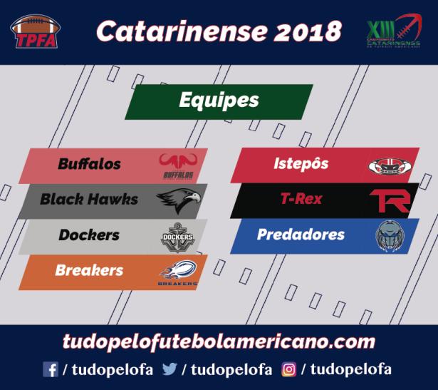 Campeonato Catarinense XIII - Times