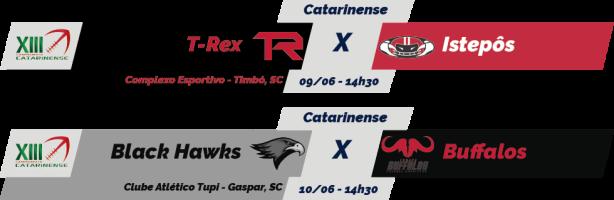 TPFA - 2018-06-10 - Catarinense - Jogos
